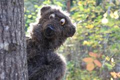 Karhu metsässä